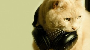 cat-with-headphones-728x409